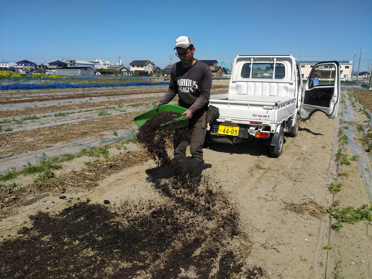 堆肥を撒く園長